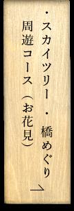 スカイツリー・橋めぐり周遊コース(お花見)